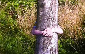 Person hugging a tree trunk