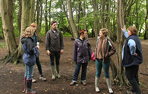 Group of people learning about coppiced woodland