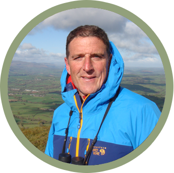 Naturalist and presenter Iolo Williams