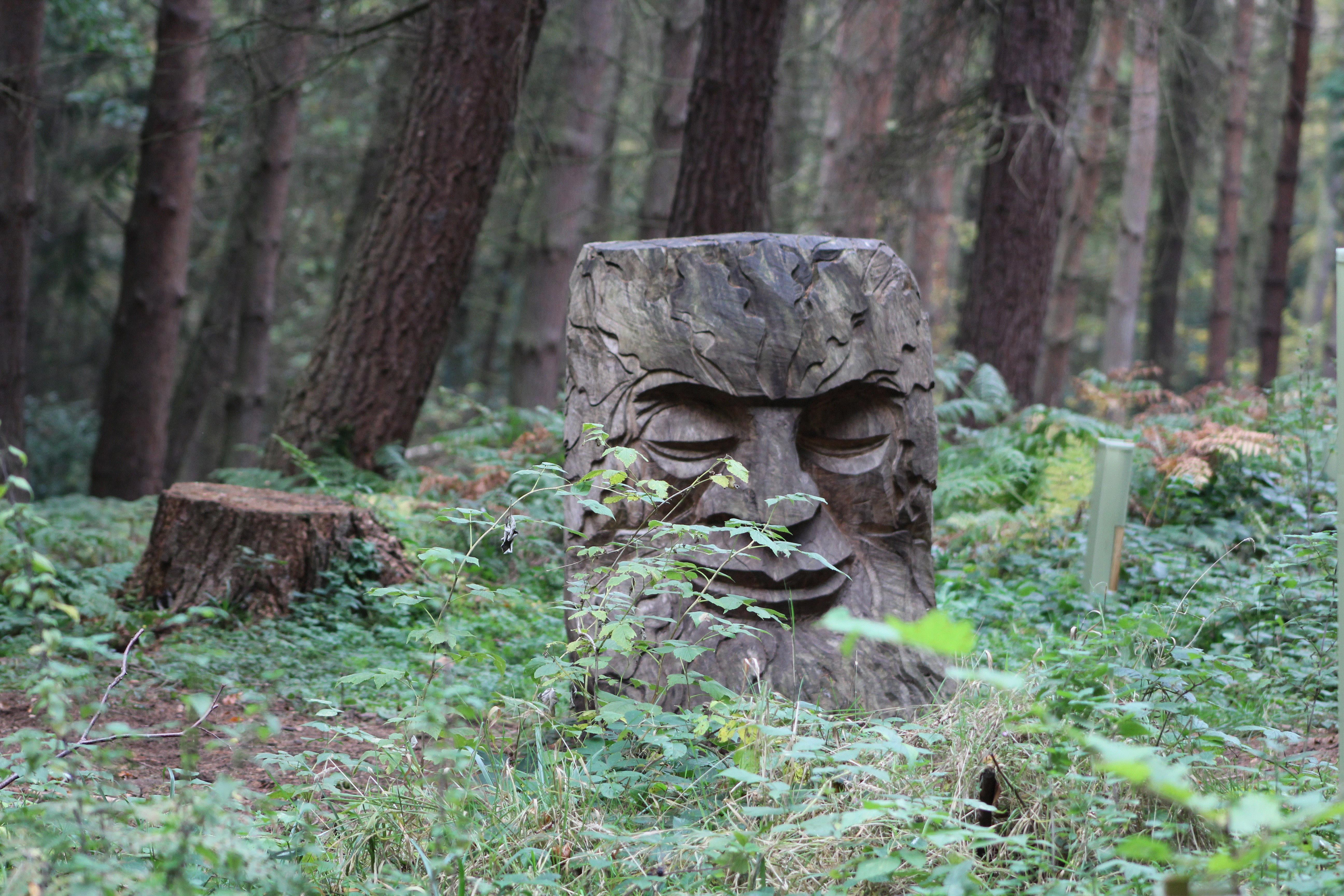 The trunk of a felled tree sculpted into a face