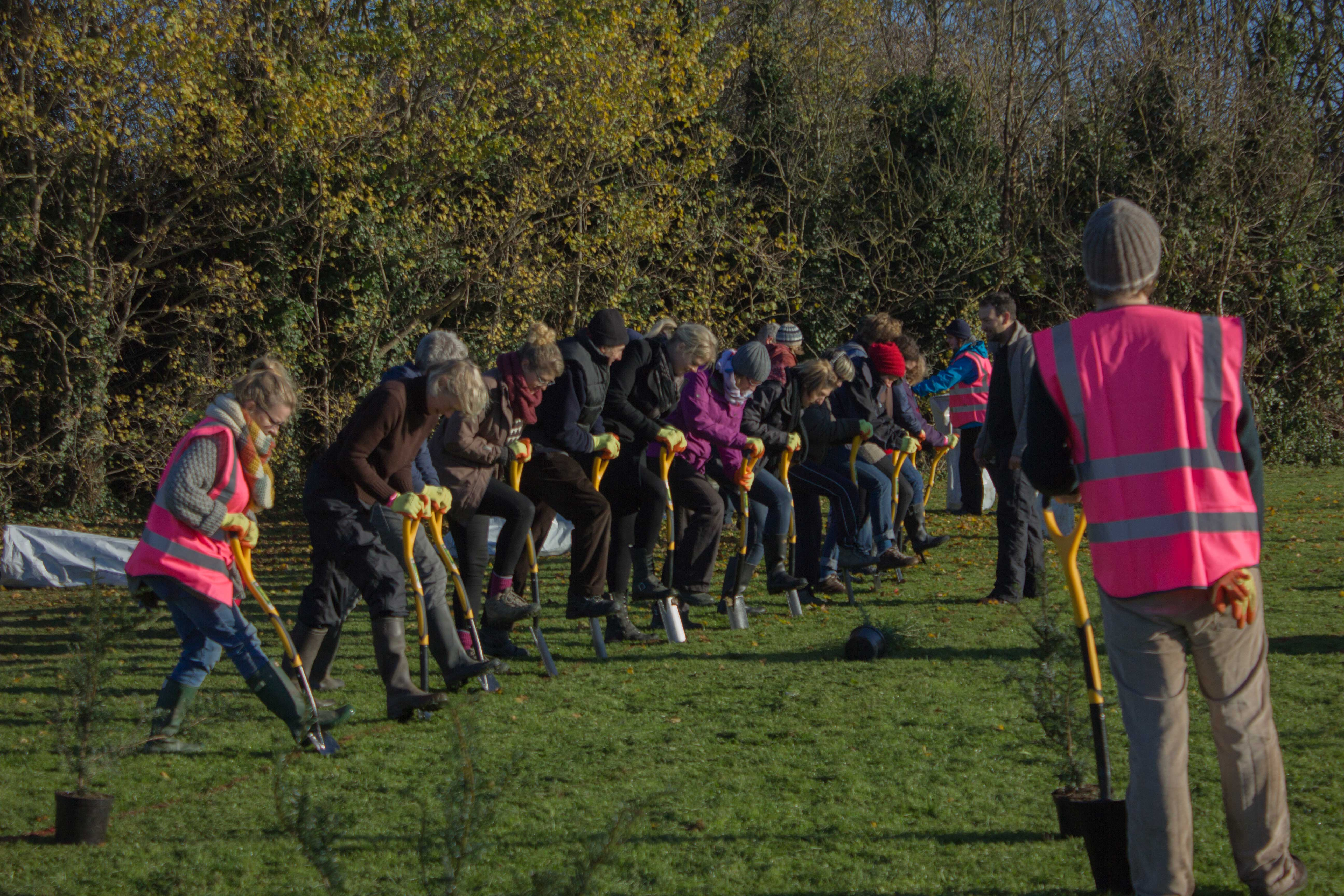 Group of volunteer tree planters digging with spades