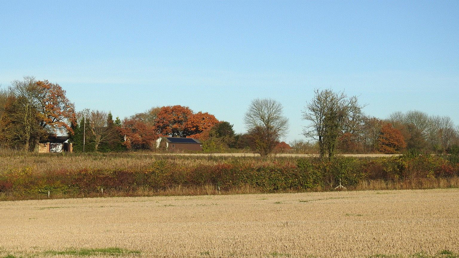 Arable farmland bordered by hedgerows and mature trees